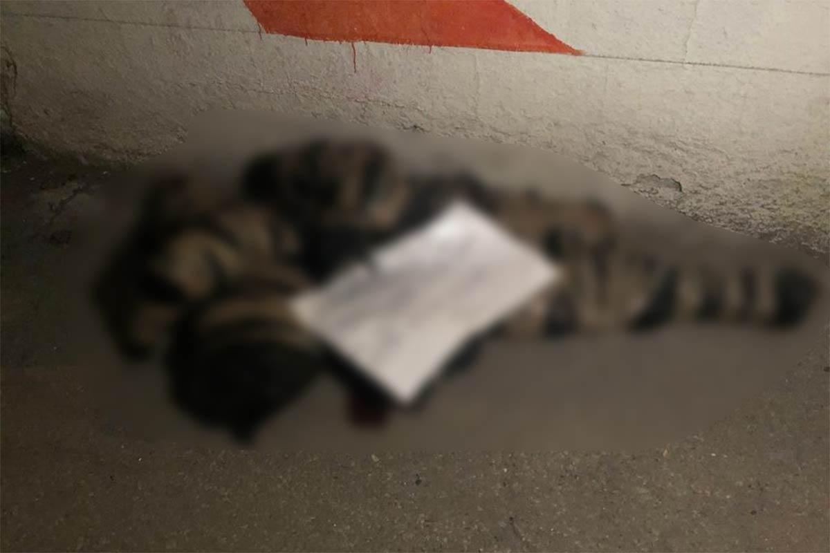 Resultado de imagen para ¡Terrible Hallazgo! en Tultitlán cuerpos en bolsas de plástico.