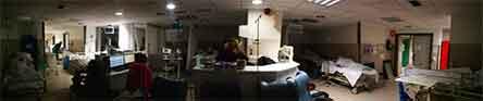 hospital de la paz, madrid, muerem anciano, hombre, 81 anos, atacado, sabado, perros, tres, rettweiler, alemanes, noticias, fieras, destrizaron, brazo, notivias de hoy,flipboard,.