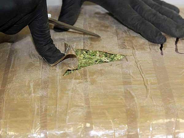 Elementos de la PF hallaron 50 paquetes de mariguana en la camioneta de un sujeto que conducía a exceso de velocidad en SLP. Foto: Especial