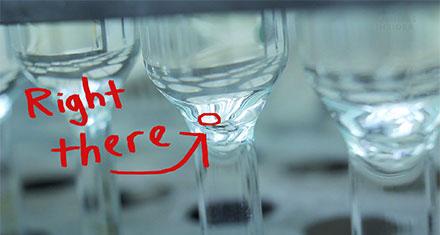 Una copa pequeña y lo que el escorpión deposita es una minúscula gotita