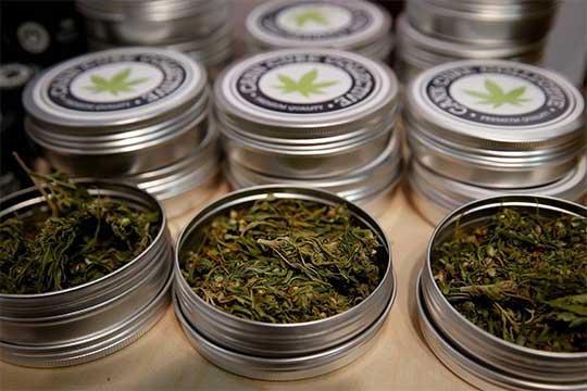 Latas de cannabis