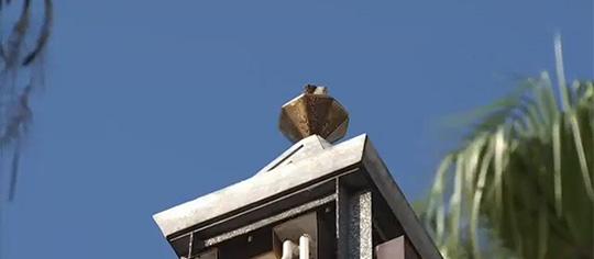 Roban escultura de Marylin Monroe de calles de Hollywood
