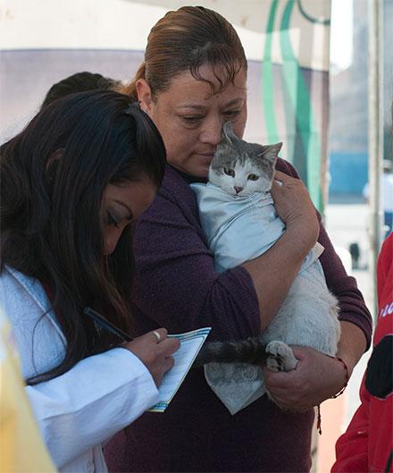 Mujer abraza a su gato en la veterinaria; el pequeño trae una cobijita.