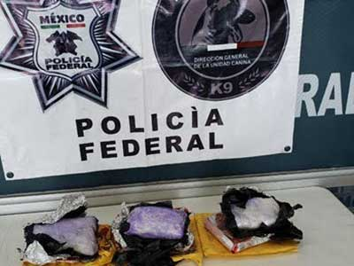 Bolsas de droga decomisadas que fueron encontradas en una mesa de piedra. Foto: Especial