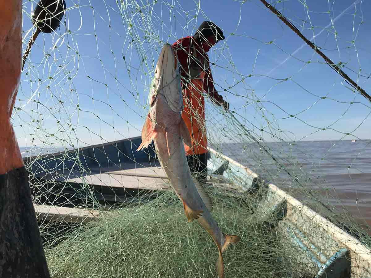 El líder de los pescadores de San Felipe destacó que las labores se realizarán fuera del polígono de protección de la vaquita