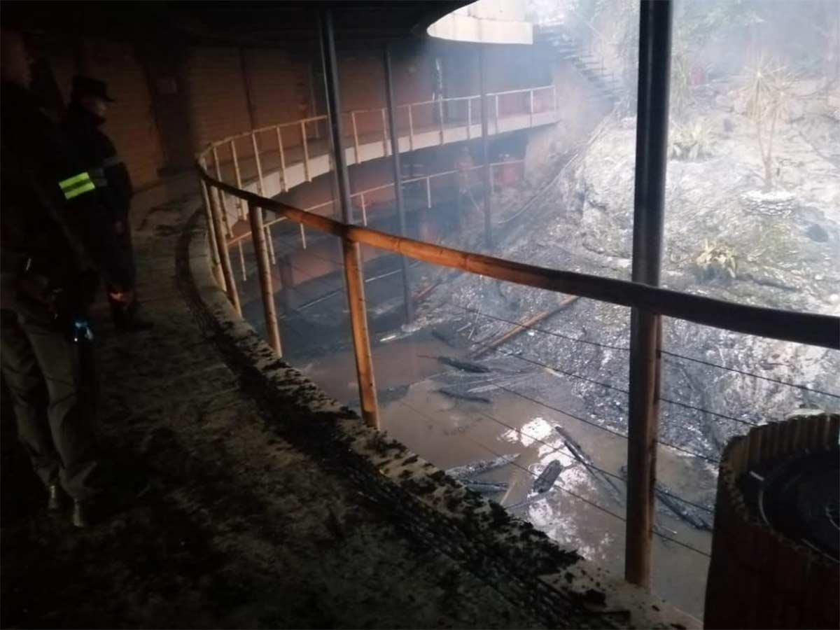 Al lugar llegaron bomberos, uno de ellos resultó herido, luego de que una de las vigas cayó y lo golpeó