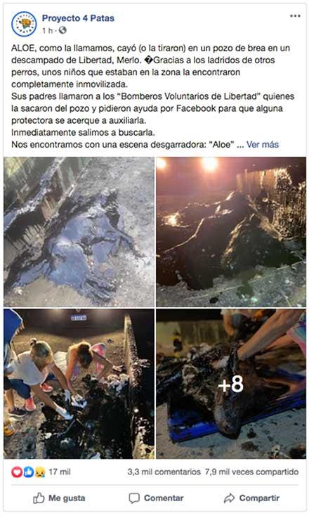 fotos del posteo en facebook