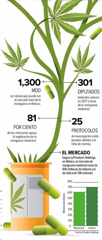 En el país, al menos 80% de los mexicanos están de acuerdo con la legalización de la mariguana. Gráfico: Excélsior
