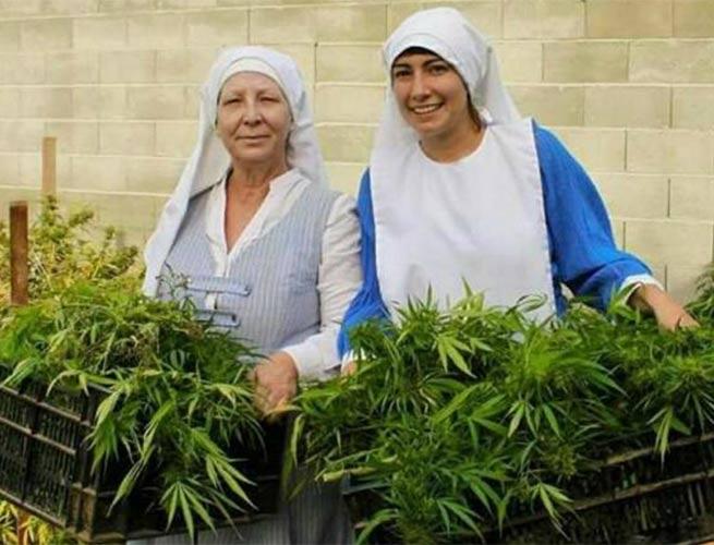 ESTADOS UNIDOS / CALIFORNIA: �Religiosas� creen en la mariguana, la cultivan y la explotan