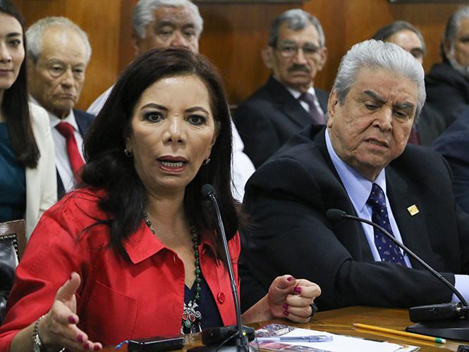 Respaldo 'ipso facto' a Ochoa Reza para dirigir al PRI