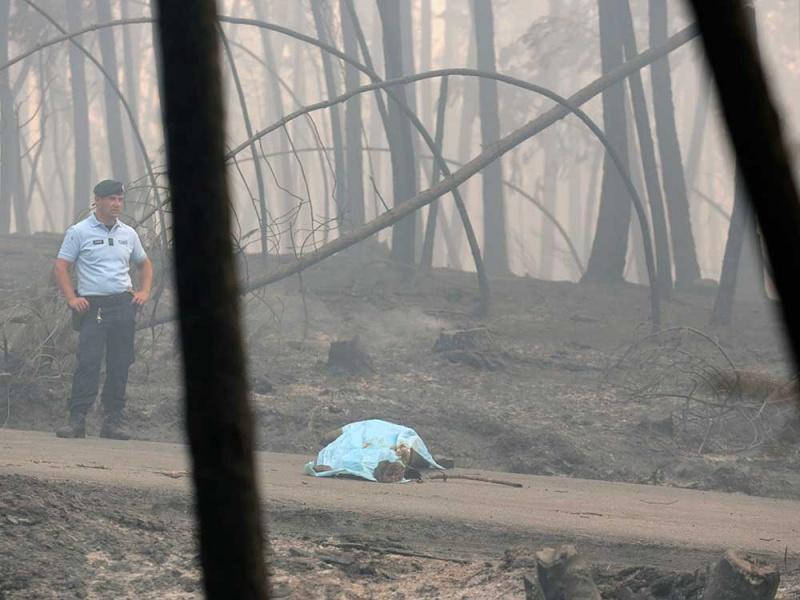 Aumenta a 62 el número de muertos por incendio en Portugal
