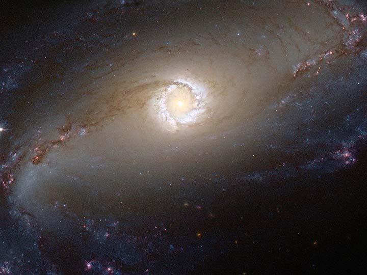 Difunden que la NASA podría anunciar el descubrimiento de vida extraterrestre