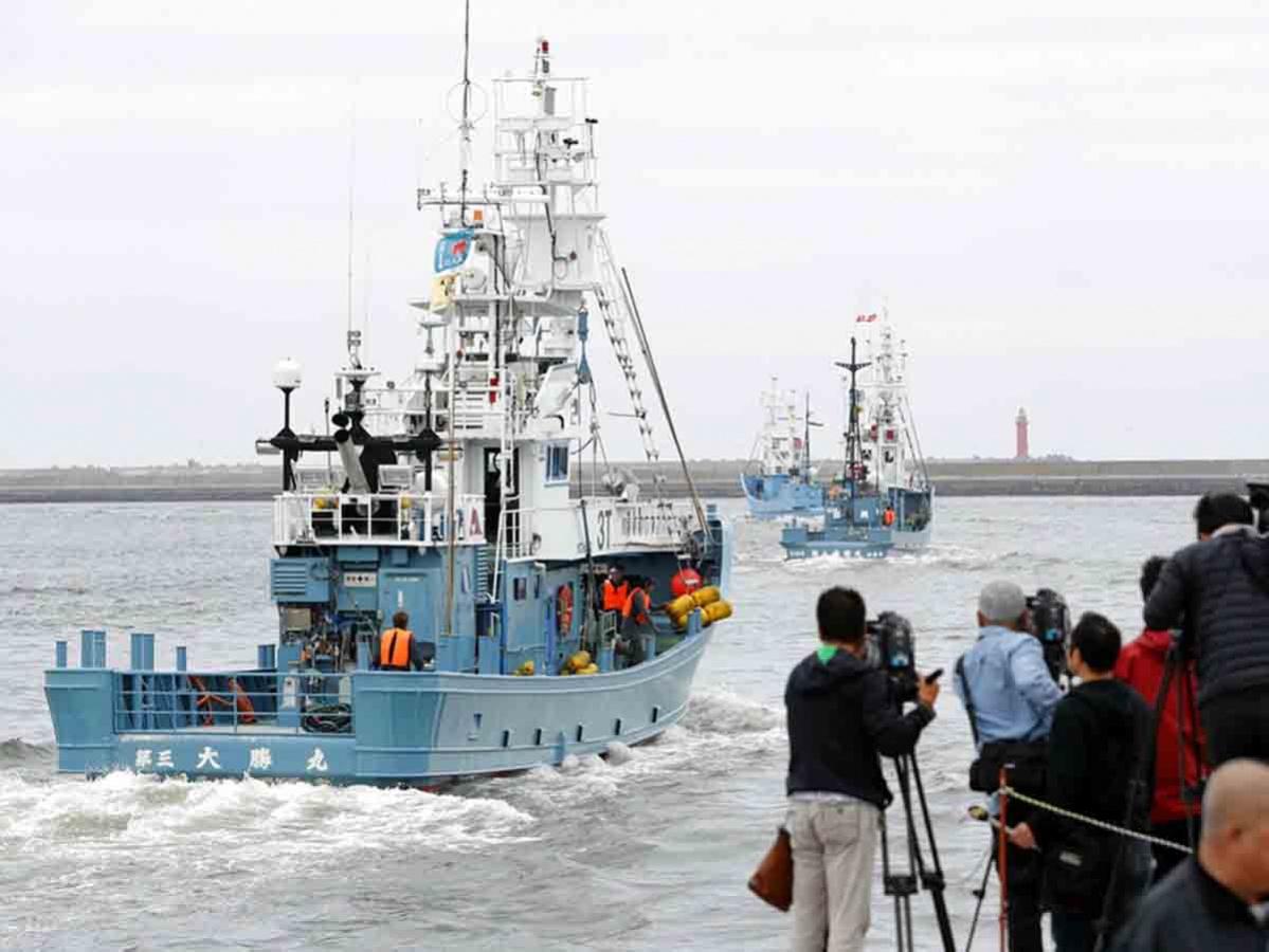 Pueblo japonés celebra primera caza de ballenas de la temporada