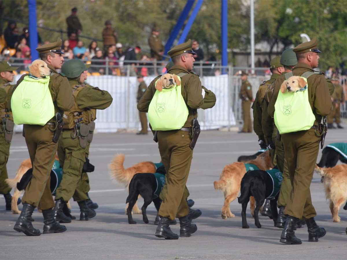 Policía de Investigaciones y contingente femenino destacan en parada militar de Chile