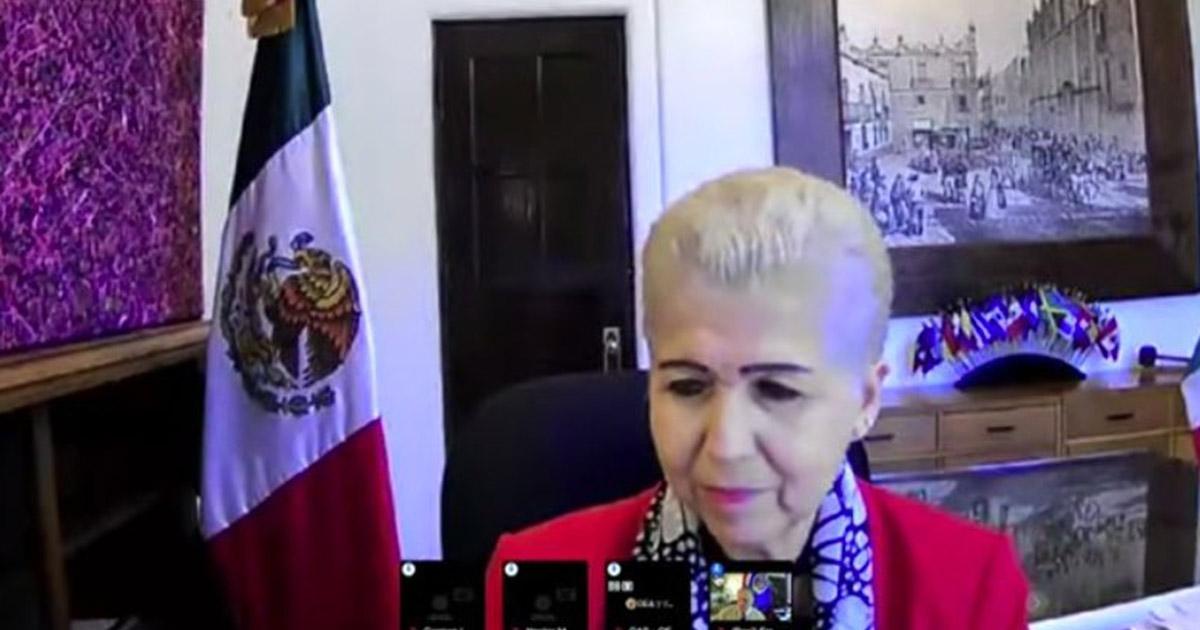 México ejerció su liderazgo global durante pandemia por covid-19: Luz Elena Baños