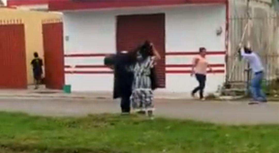 Abejas africanas atacan a abuelita en Quintana Roo