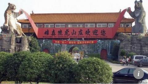 Parque de Tigres y Osos de Guilin donde un tigre mató a un cuidador que vendía vino milagroso