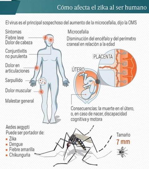 Buenas Noticias, Salud, Zika, México, Economía