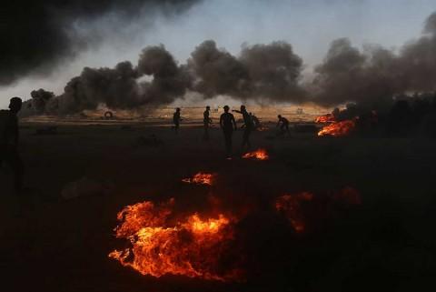 'La guerra engendra guerra': papa Francisco sobre conflicto en Gaza