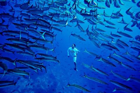 8 de junio, Día Mundial de los Océanos. Foto: Reuters