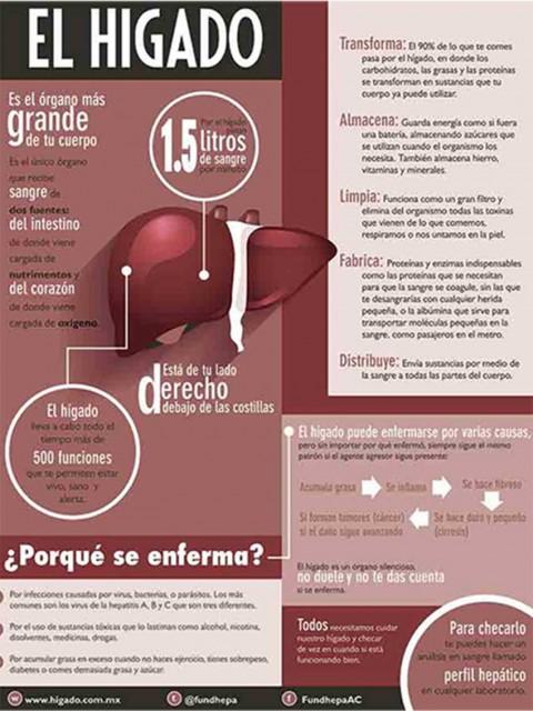Hepatitis C, Higado, Mexicanos, Mexico, America Latina, Salud