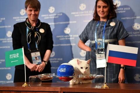 Aquiles predijo que el ganador del partido inaugural es… Foto: Reuters