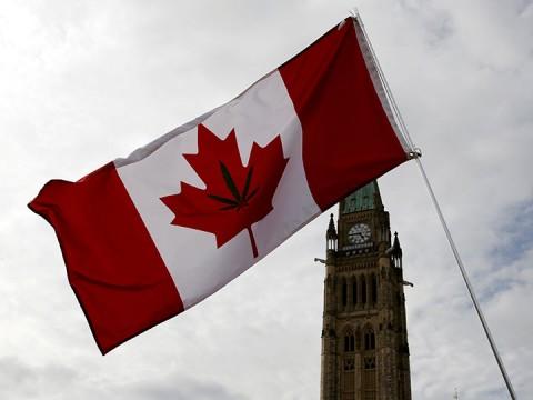 Canadá aprueba el consumo de mariguana con fines recreativos (Foto: Reuters)