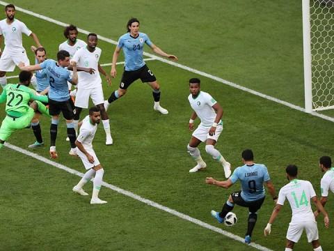 selección uruguay, mundial rusia 2018, copa del mundo fifa, octavos de final, copa mundial