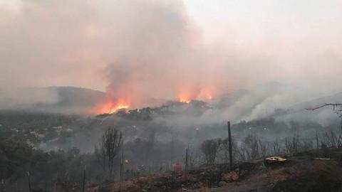 Evacuan a cientos en California por incendios forestales