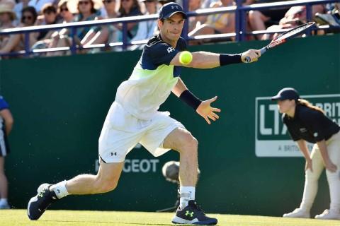 Andy Murray regresó a la victoria un año después