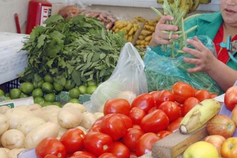 Se exhorta a la gente lavar frecuentemente las manos y desinfectar frutas y verduras. Foto: Especial
