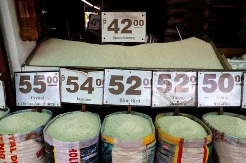 Hallan en arroz transgénico una esperanza contra el sida