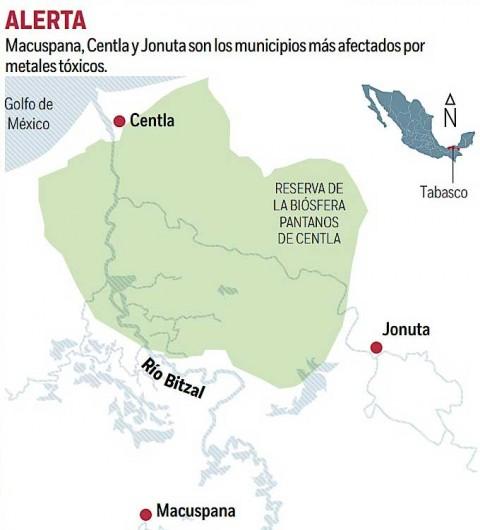 Salud, Río, Bitzal, Villahermosa, Tabasco, Seguridad, Manatíes, Enfermedad, Llagas, Manatíes