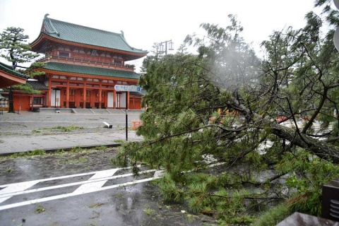 Tifón 'Jebi' causa al menos 2 muertos y daños en Japón