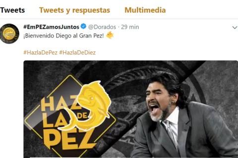 Diego Maradona nuevo técnico de Dorados