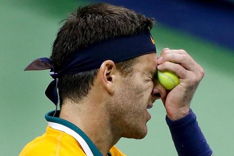 Juan Martín Potro, Us Open, Ranking Mundial, Subcampeón,