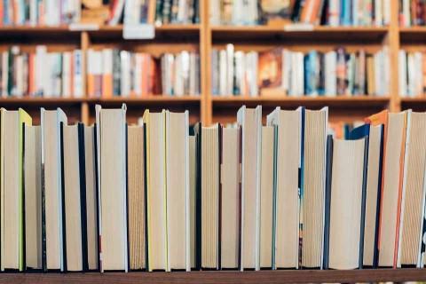 Arrestan a hombre por no devolver 222 libros a la biblioteca