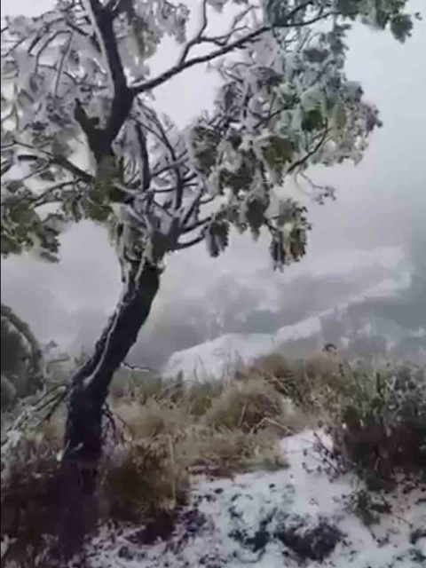 Aunque usted no lo crea: Tormenta invernal azota Hawaii