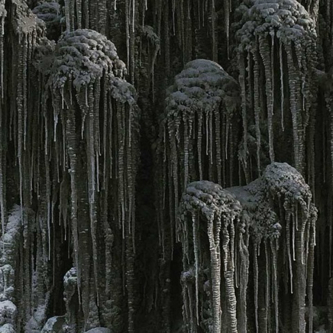 Cae nieve negra tóxica en Siberia