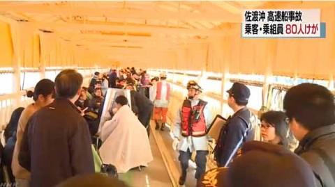 Barco choca contra una ballena en Japón; al menos 80 heridos