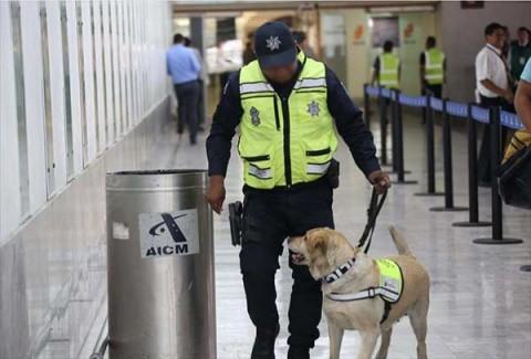 Integrantes de la Unidad Canina de la División de Fuerzas Federales detectaron una maleta repleta de cocaína