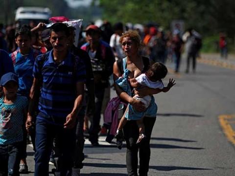 Trump enviaría migrantes a ciudades