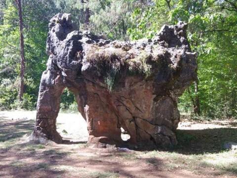 Piedra El Elefante en Tamaulipas
