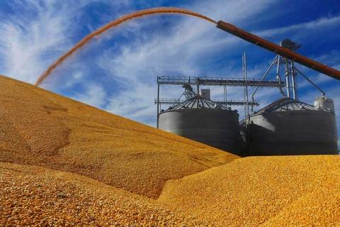 México comprará a Estados Unidos gran cantidad de productos agrícolas, anuncia Trump