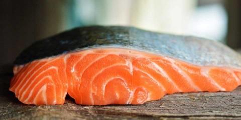 Venderán salmón 'mutante' en EU