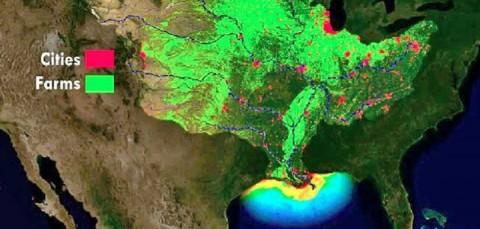 'Zona muerta' del Golfo de México, casi del tamaño de Hidalgo