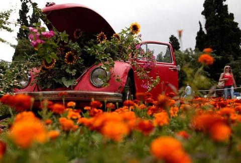 Adiós al Beetle, Volkswagen se despide del emblemático coche