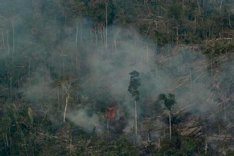 Bolsonaro modera tono y agradece ayuda para la Amazonia