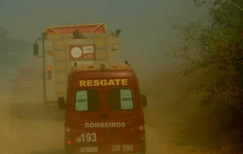 Países del G7 donarán 20 mdd para la Amazonia
