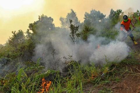 Cierran miles de escuelas en Indonesia por incendios forestales